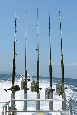 saltwater fishing reels and rods mounted on the stern of a fishing boat